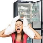 сильно шумит холодильник